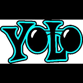 YOLO Dataset Support